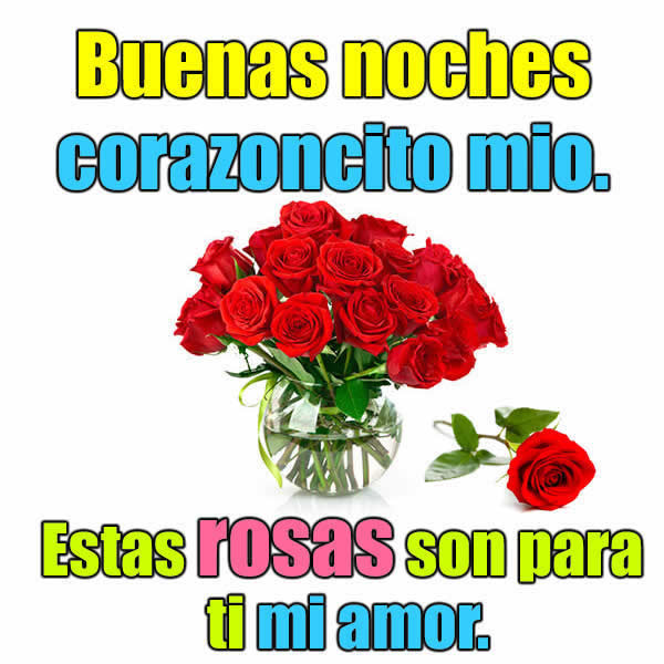 Fotos rosas rojas