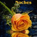 Letras de una rosa amarilla de noche