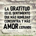 Frases de gratitud con imagenes