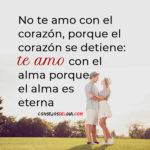 No te amo con el corazon