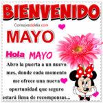 Mes de Mayo Frases con imagenes
