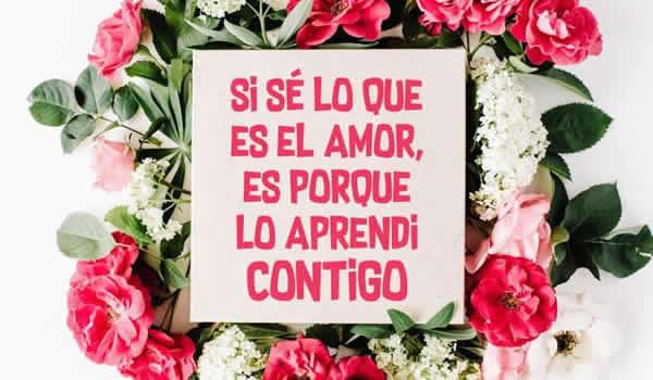 amor contigo