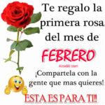 Imagenes con Frases: Bienvenido mes de Febrero