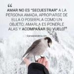 Mensajes bonitas con Fotos: Frases de la Vida