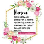 Frases lindas con fotos: Nunca renuncies a un sueño