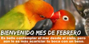 frases febrero