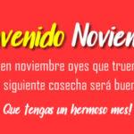 Imagenes con mensajes para recibir el mes de Noviembre