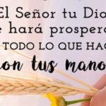 Imagenes con frases de Prosperidad y fe a Dios