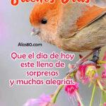 Imagenes de Buenos Dias con Frases Bonitas