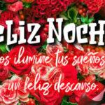 Frases de Feliz Noche con fotos lindas